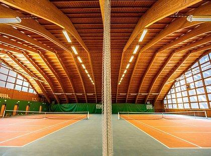 Tento obrázek nemá vyplněný atribut alt; název souboru je tenisovka.jpg.